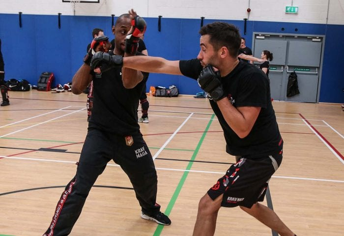 Krav Maga Online Lessons on Punch Defences